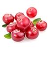 GMO Free Cranberry