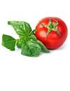 Garden Tomato Basil